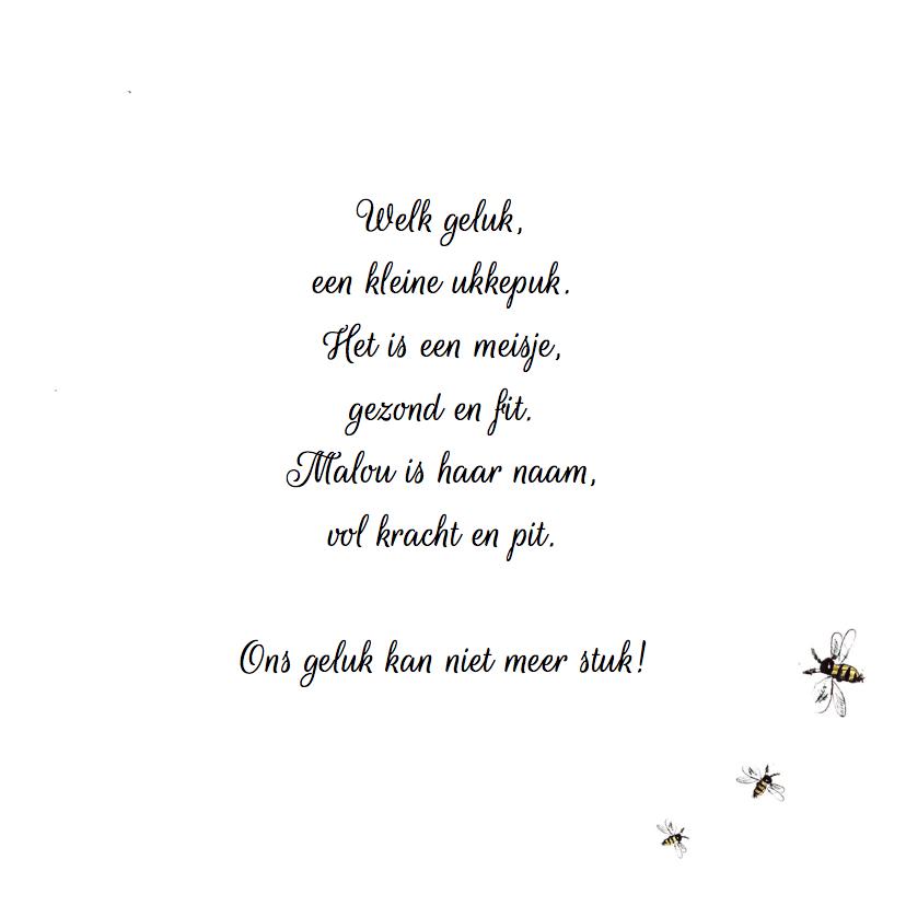 Geboortekaart vlinder libelle 3