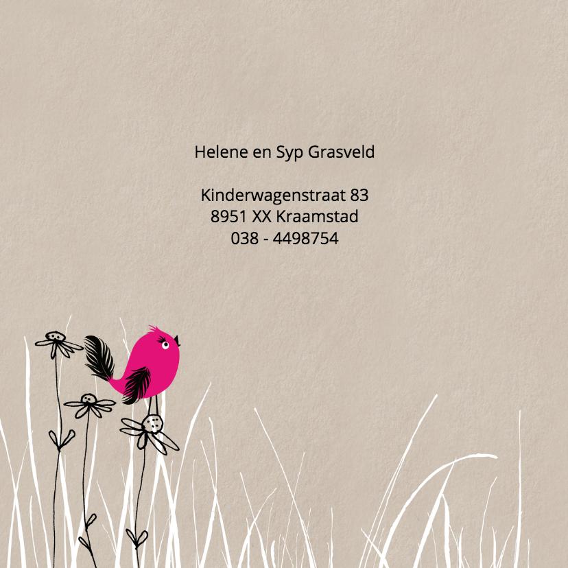 Geboortekaart Weidevogel 2