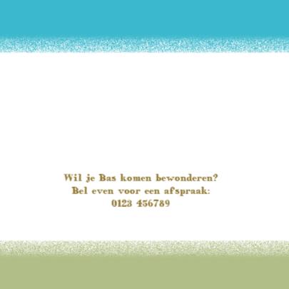 Geboortekaartje Bas 2