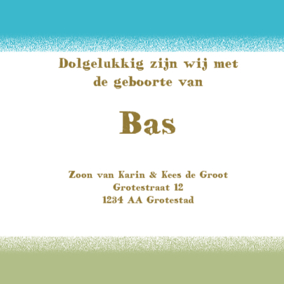 Geboortekaartje Bas 3
