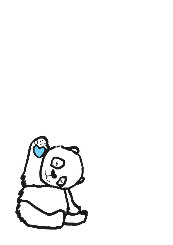 geboortekaartje beer Borre 2