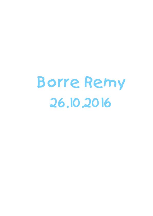 geboortekaartje beer Borre 3