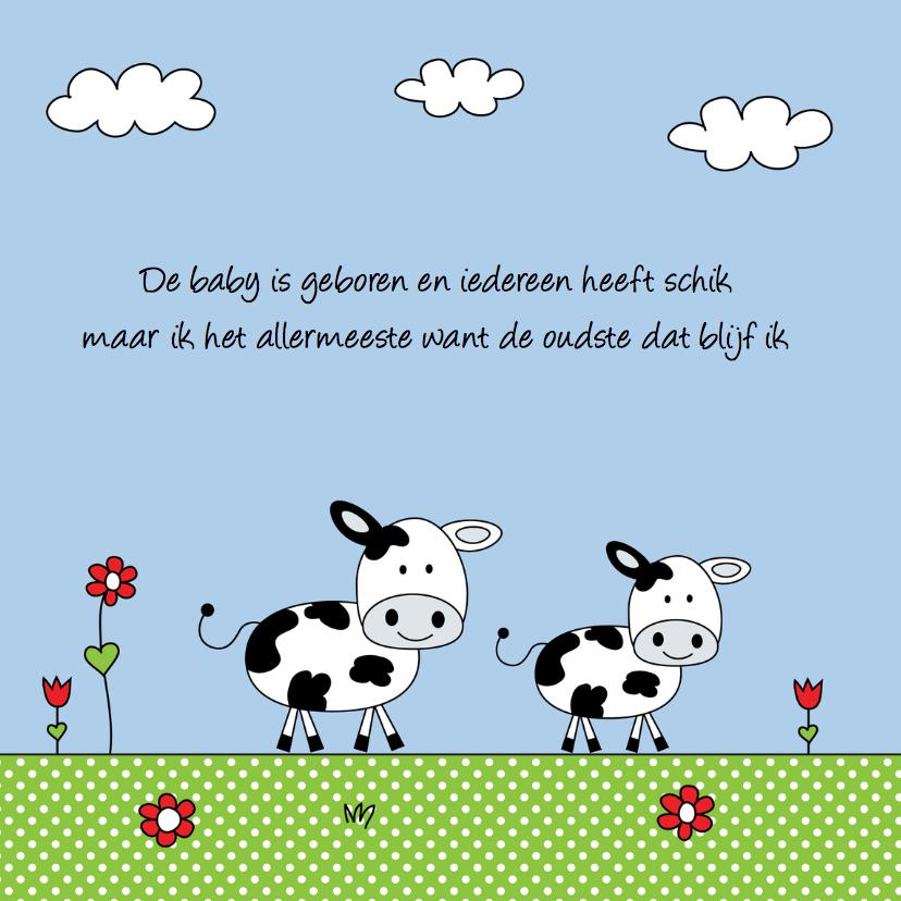 Geboortekaartje broertje koe weiland 2