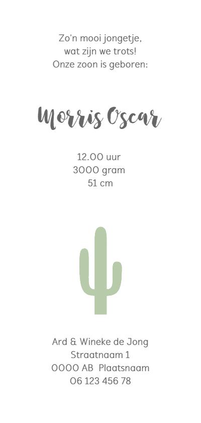 Geboortekaartje cactus groen langwerpig Achterkant