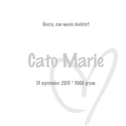 Geboortekaartje Cato LS 3