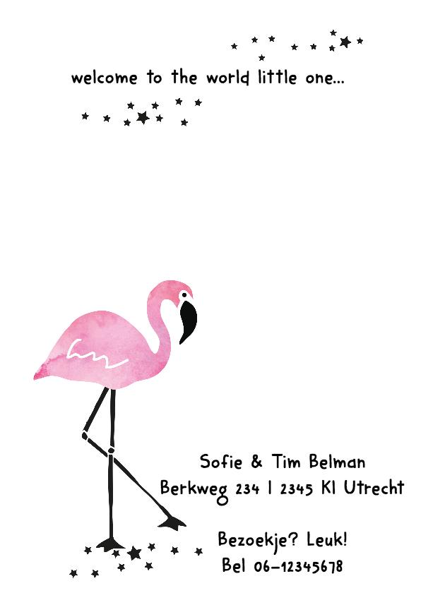 Geboortekaartje Flamingo Lisa 2