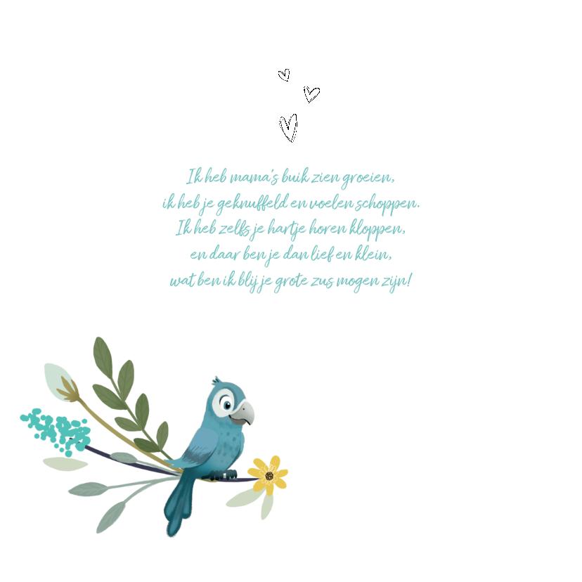 Geboortekaartje geïllustreerde vogeltjes zusje of broertje 2