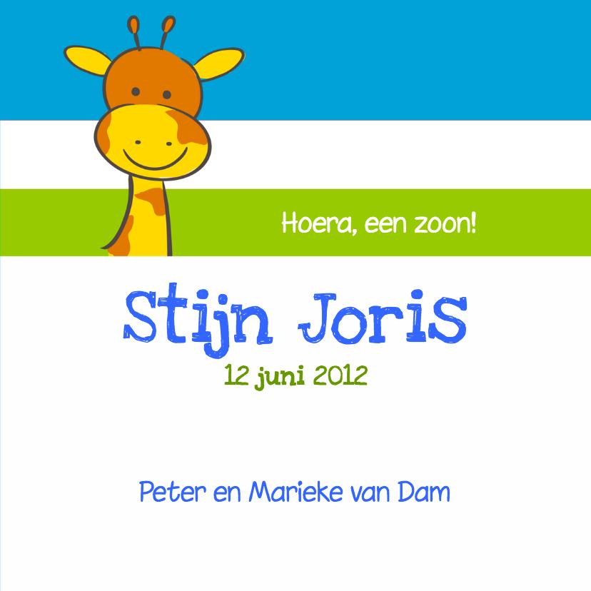 Geboortekaartje giraf jongen 3