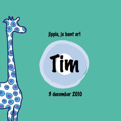 Geboortekaartje giraffe jongen 3