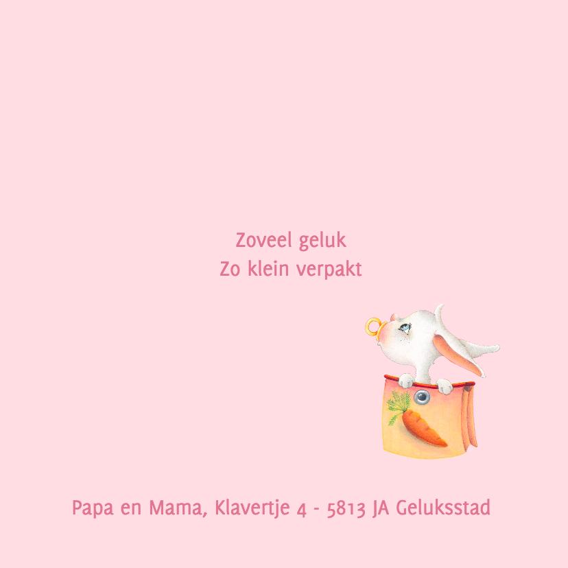 Geboortekaartje haasje waslijn 2