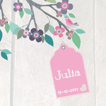 Geboortekaartje Jeansboom Julia 3