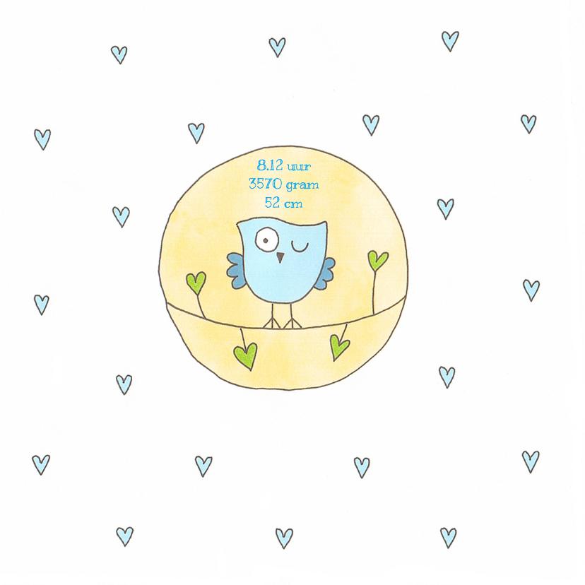 Geboortekaartje jongen uil cirke 2