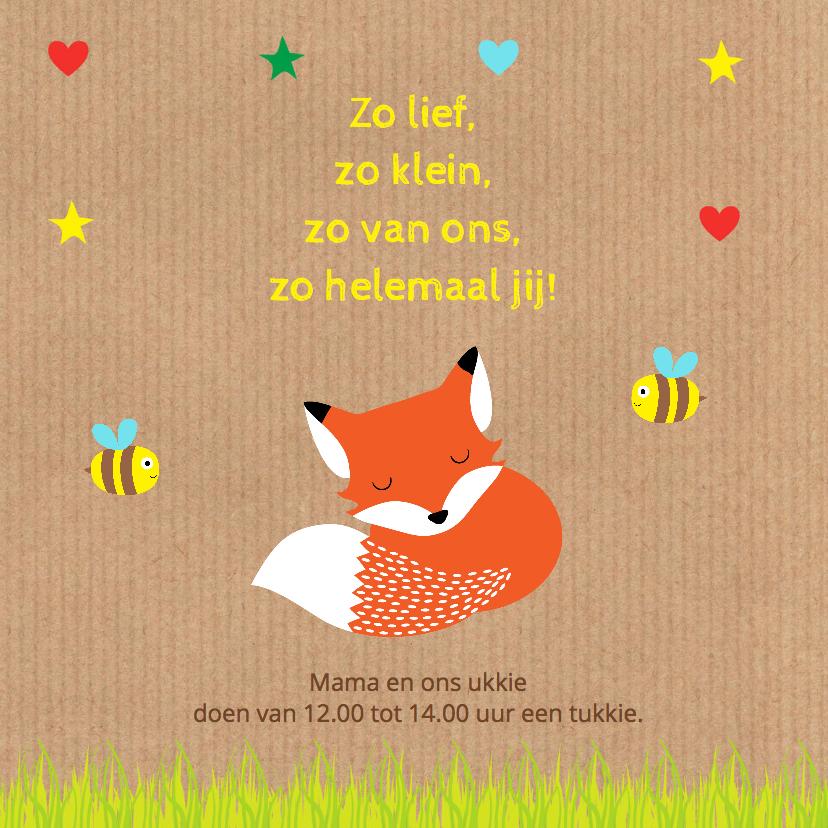 Geboortekaartje jongen vos kraft 2