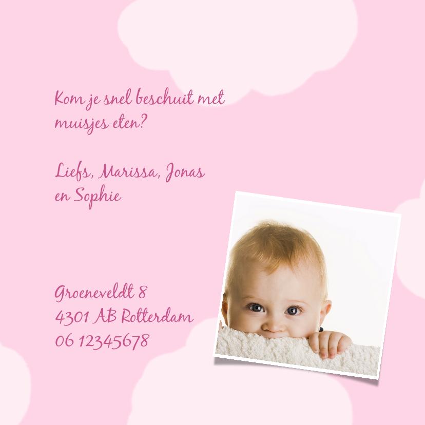 Geboortekaartje Knuffelkat meisje 3