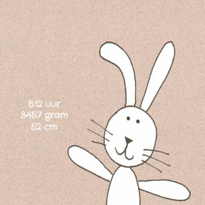 Geboortekaartje konijn op roze 2