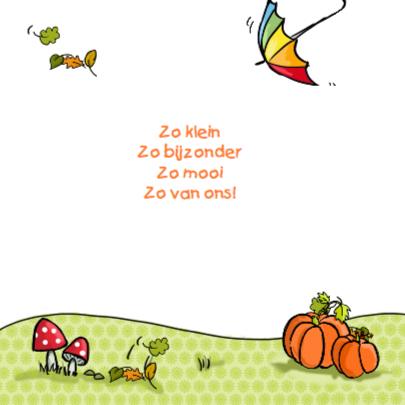 Geboortekaartje kruiwagen meisje 2