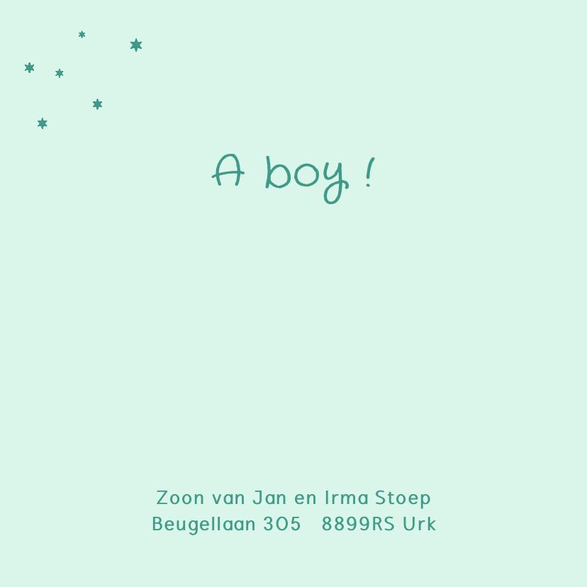 Geboortekaartje lief hobbelpaard  2