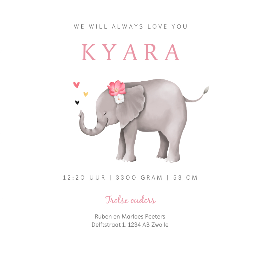 Geboortekaartje lief met geïllustreerd olifantje 3