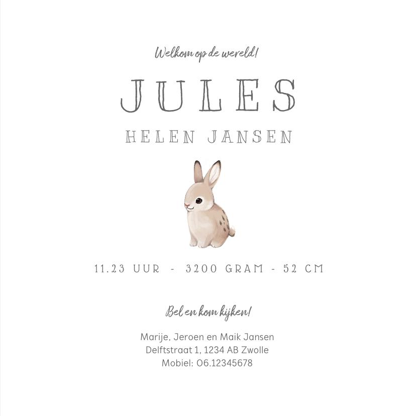 Geboortekaartje lief met konijntje voor jongen of meisje 3