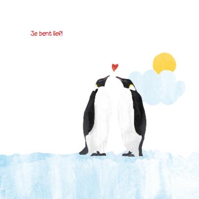 Geboortekaartje lieve pinguin 2