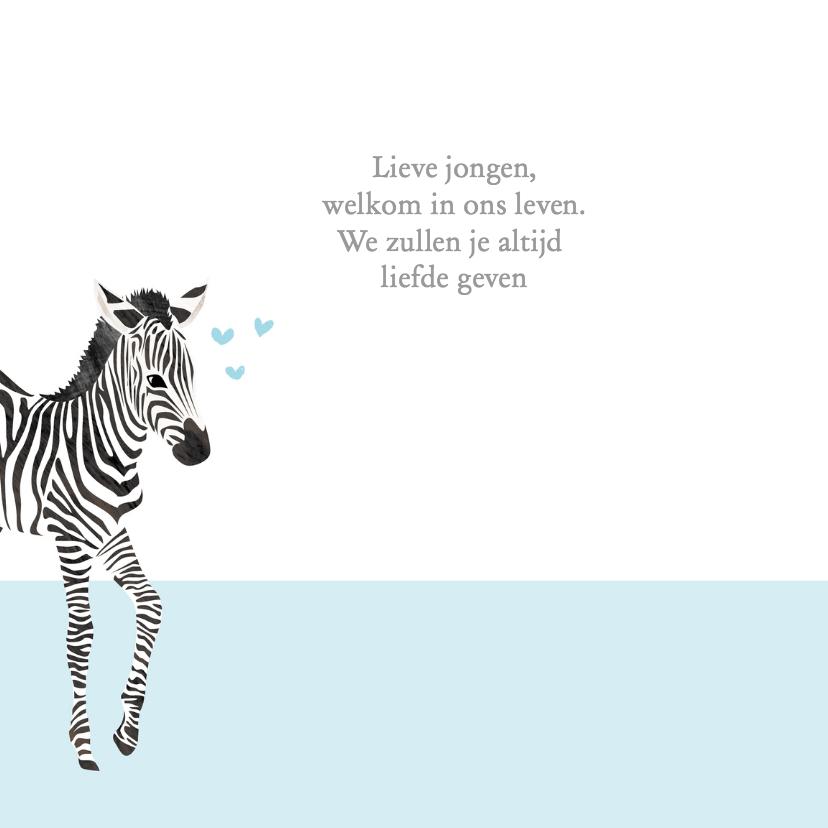 Geboortekaartje lieve zebra 2