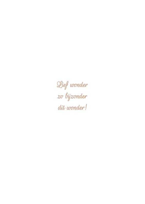 Geboortekaartje Lize - HM 2