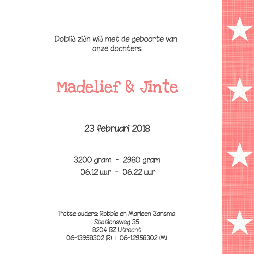Geboortekaartje Madelief & Jinte 3