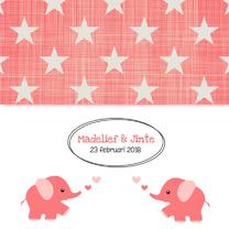 Geboortekaartjes - Geboortekaartje Madelief & Jinte