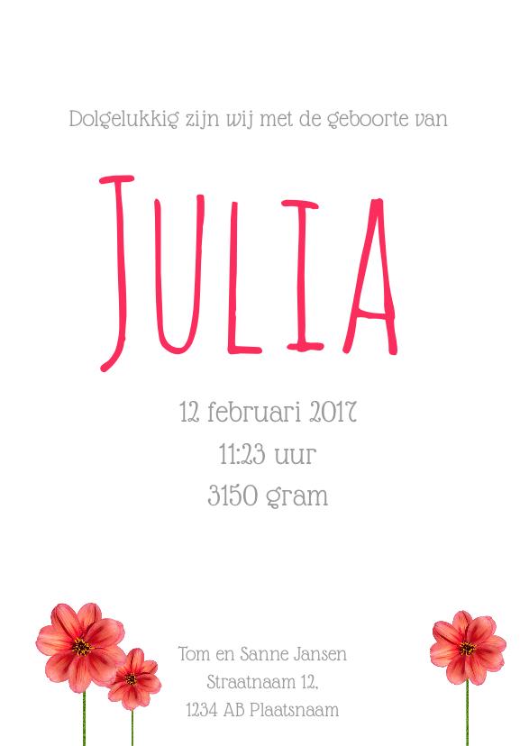Geboortekaartje Meisje Julia 3
