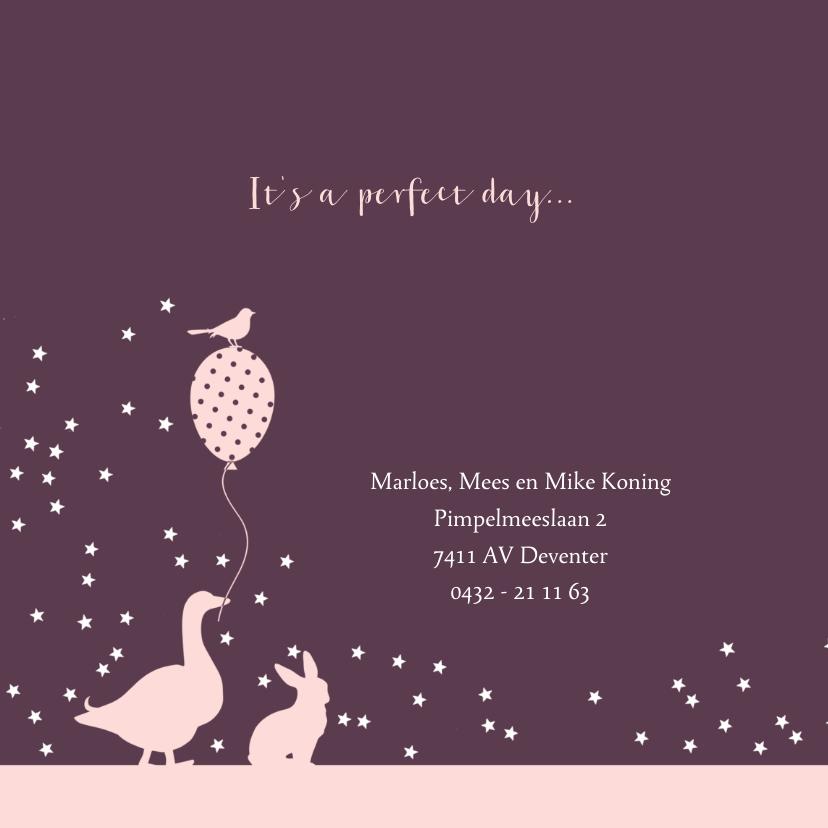 Geboortekaartje met dieren en treintje  2