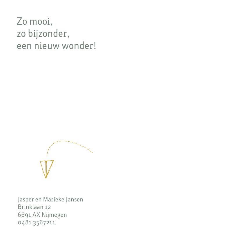 Geboortekaartje met een gevouwen vliegtuigje van papier 2