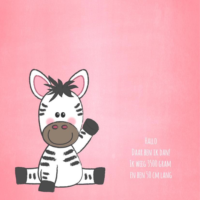 Geboortekaartje met een hartje en een zebra 2