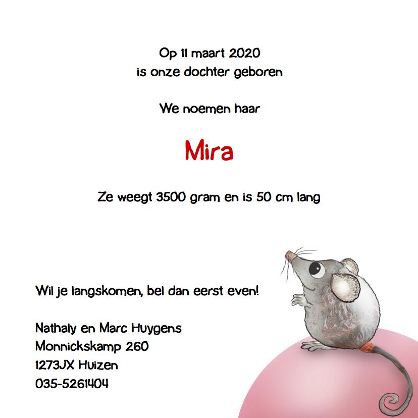 Geboortekaartje met muisjes! 3