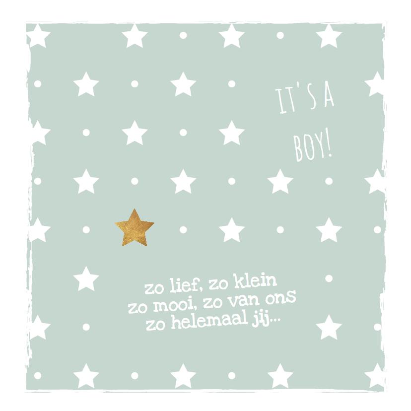 Geboortekaartje mint groen met sterren - LO 2