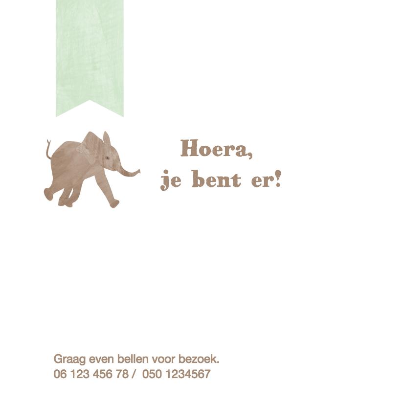 Geboortekaartje olifant hartjes 2