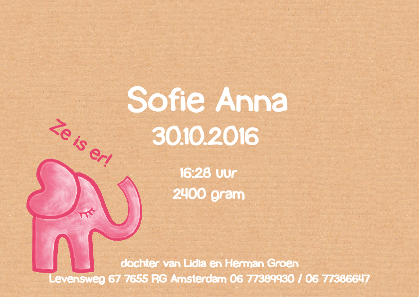 geboortekaartje olifant Sofie 3