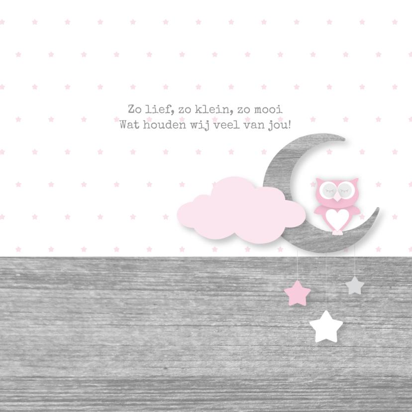 Geboortekaartje Owl Moon Girl 2