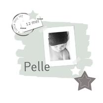 Geboortekaartjes - Geboortekaartje Pelle