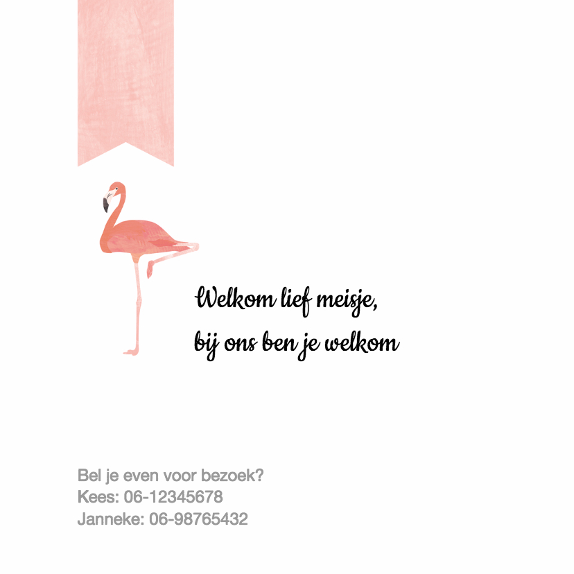 Geboortekaartje roze flamingo's 2