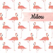 Geboortekaartjes - Geboortekaartje roze flamingo's