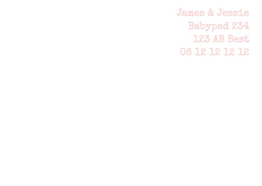 Geboortekaartje roze slofjes 2