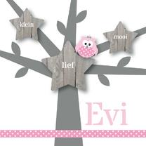 Geboortekaartjes - Geboortekaartje roze uiltje boom
