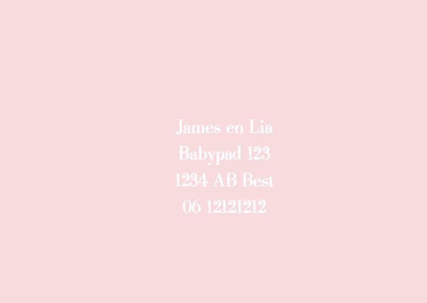 Geboortekaartje roze wit tekst 2
