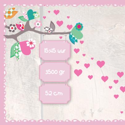 Geboortekaartje Stip Uil Anna 2