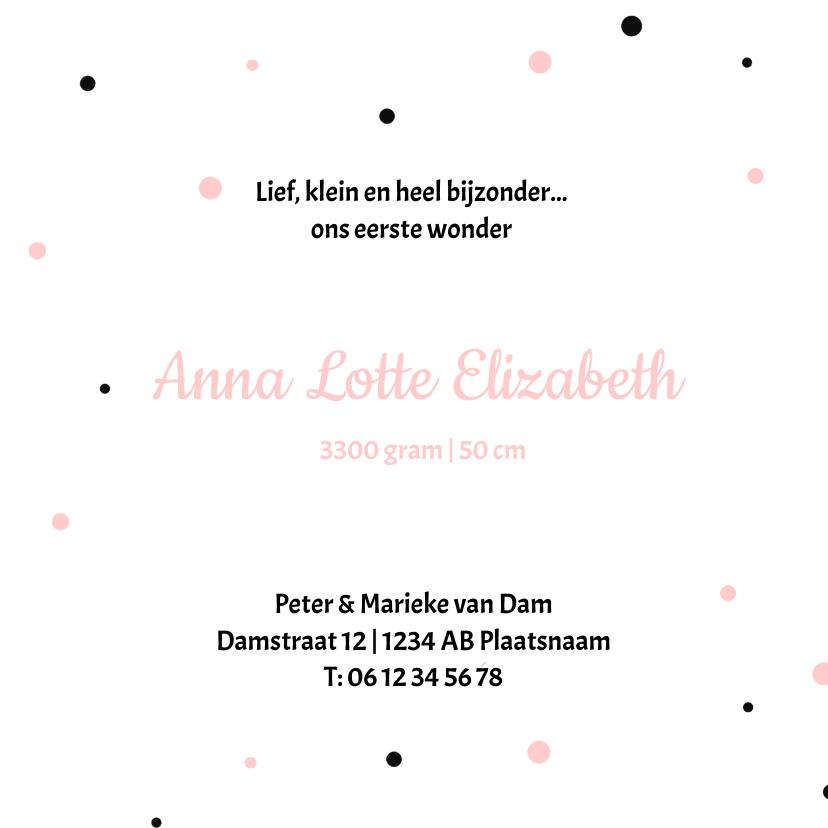 Geboortekaartje stippen Annelot 3