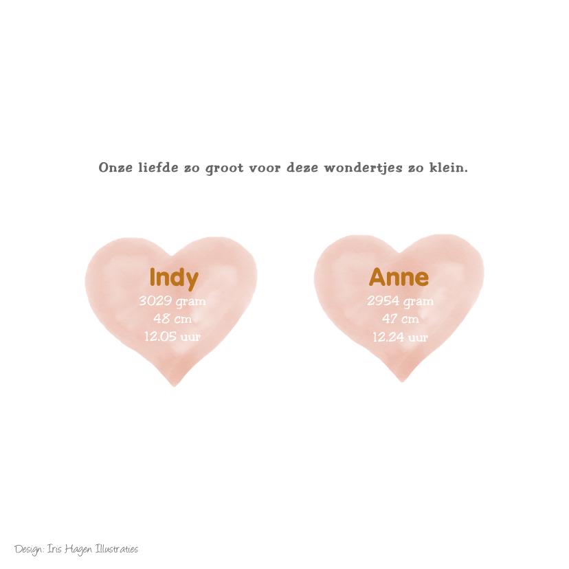 Geboortekaartje tweeling meisjes met vos en watercolour hart 2