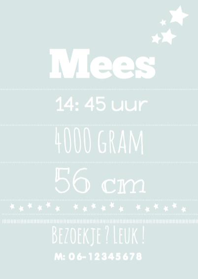 Geboortekaartje Typografie Mees 3