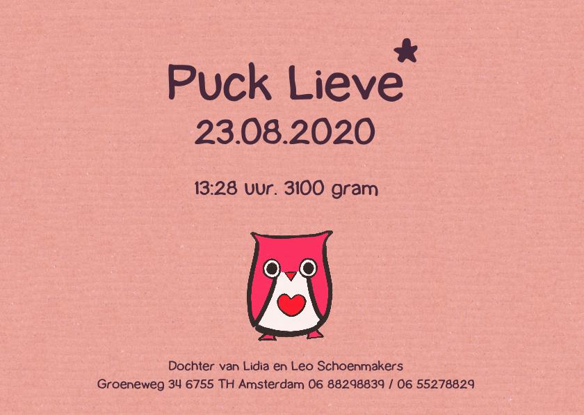 geboortekaartje uil Puck 3