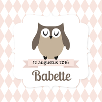 Geboortekaartjes - Geboortekaartje uiltje cute