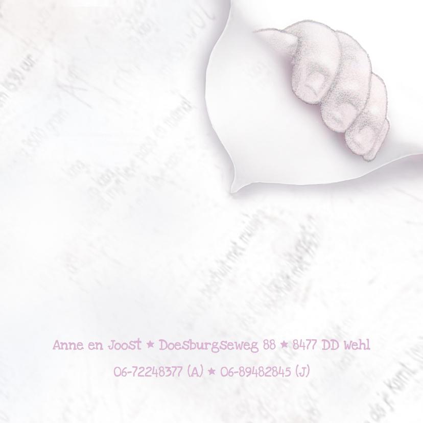 Geboortekaartje voetjes Meisje 3